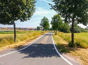 geteerter Radweg