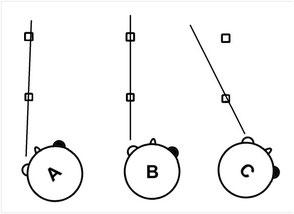 Parallax-Effekt: Die Sicht auf die Objekte verschiebt sich, da die Körperachse gedreht wird, nicht die optische Achse des Auges.