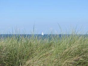 Bild: Segeln, Meckenburger Bucht, Kühlungsborn, Heiligendamm, www.mollisland.de