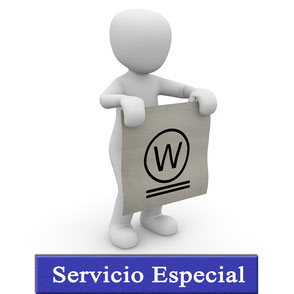 Servicio Especial. Wet Cleaning