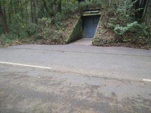 Ein alter Munitionsbunker dient als Weinlager. Der Bunker bietet das ganze Jahr eine gleichbleibende Temperatur zwischen 8 und 12 Grad Celsius.