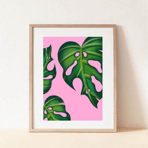 monstera illustration pink