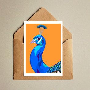 peacock illustration art print