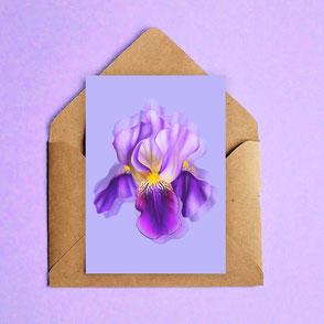 colorful iris flower mini print