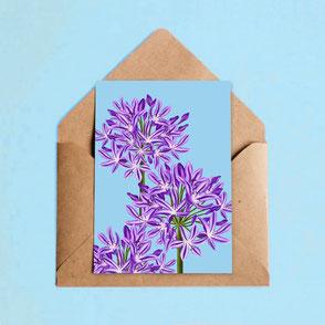 flower illustration print agapanthus