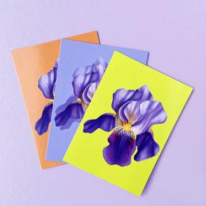 set of three flower mini prints