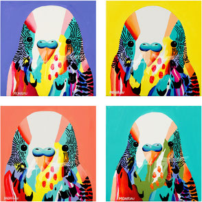 set of four canvas prints with colorful budgie iluustrations