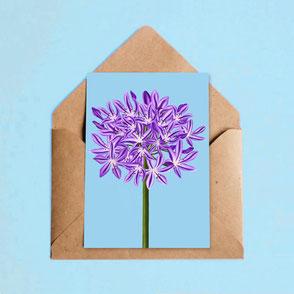 flower illustration art print agapanthus