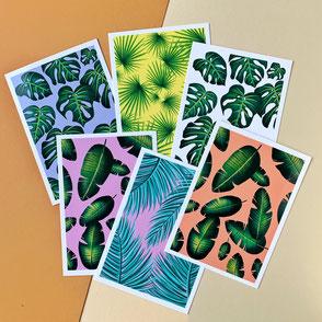set of 6 plant leaf illustrations