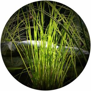 Les Lutins Verts - Entretien des espaces verts