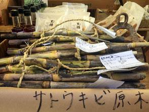 上樫森(かみかしもり)農園、代表の田波憲二さん。サトウキビの原木。昔の子供は、これをおやつ代わりにして、食べていたそうだ。