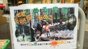 こめる農園∞こめる食堂の大島孝仁さんと、誠子さん。この日完売の、こめる農園の「なめこ」。
