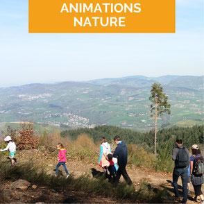 animation nature