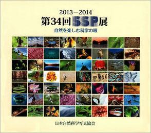 2013-2014 第34回SSP展図録