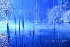 早朝の自然湖 加藤博幸