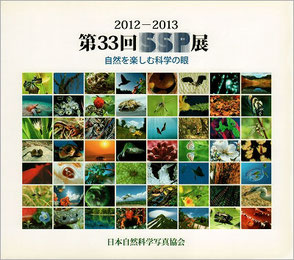 2012-2013 第33回SSP展図録