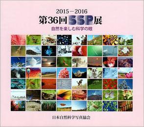 2015-2016 第36回SSP展図録