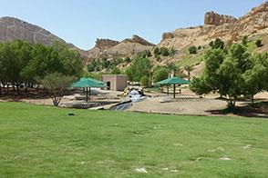Green Mubazzarah