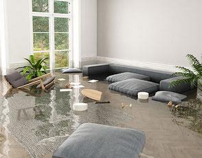 Wasserschaden Teppiche
