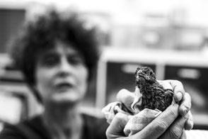 Fotografie voor goede doelen, Vogelhospitaal Haarlem
