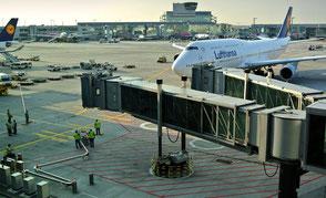 Bild: Flughafen mit Lufthansa Flugzeugen & Beladung