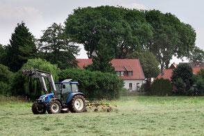 Wirtschaft und Landwirtschaft in Milte