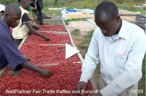 Kaffeekooperative Mboneramiryango, Gitega