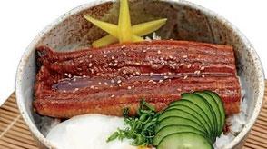 Unadon, gegrillter japanischer Aal