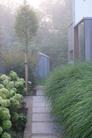 dieartigeGARDEN - Nebelmorgen