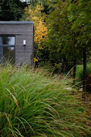 dieartige // Design Studio - #GARTEN, #nachhaltig,  #Platanen #Terrasse #Gräser #herbst #garden