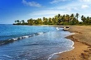 Last Minute Angebote nach Jamaika