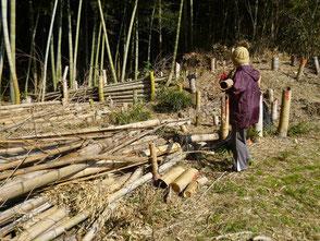 竹を運ぶ越間さん