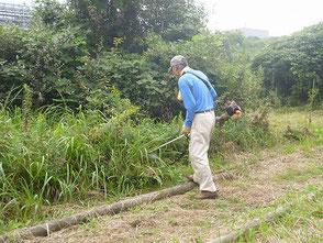水辺周辺を草刈りする橋本さん