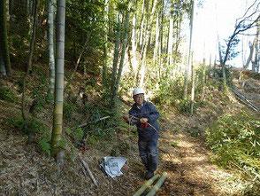 伐った竹を整理する南雲さん(竹炭の会)
