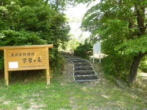 学習の森散策路入口