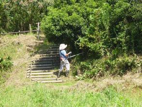 里山の斜面で草刈する木村会長