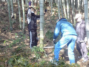 チェンソーを使って竹伐り作業する若松さん