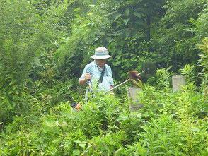 里山の急斜面で草刈する木村会長