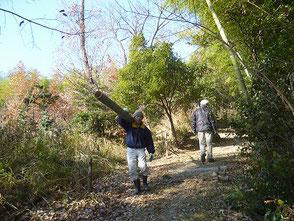 竹を担いで200m程山道を下ります