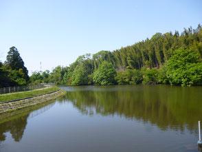 新池の風景