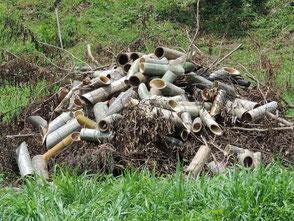 廃棄する竹灯篭、手入れで伐採した木の枝を集積