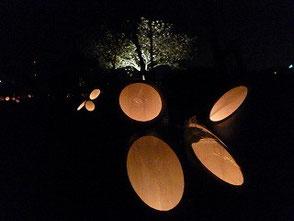 夜桜と竹灯篭の灯りです!