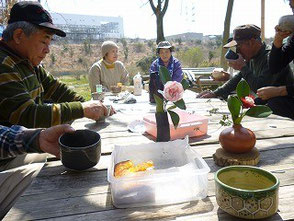森のカフェお茶会では椿や卜伴(ぼくはん)椿を飾る