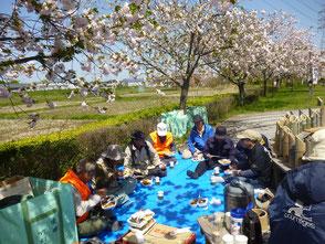 桜の下で皆で楽しい弁当タイム、この頃は風速8m