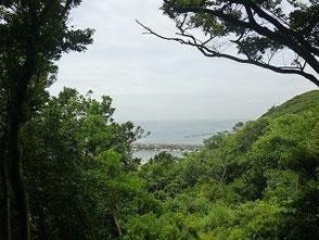 神社に設けられたセントレア眺望台からの眺め