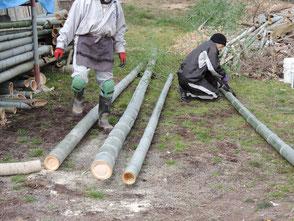 運び出した竹を裁断する冨田さん