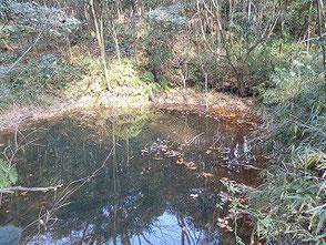 昔、田圃の水に使用した、ため池です