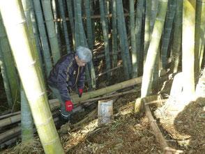 倒れた竹を切断して運び出す木村会長