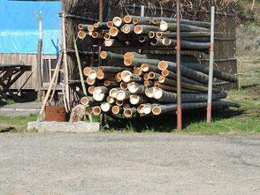 伐り出した竹、まだまだこれからです!
