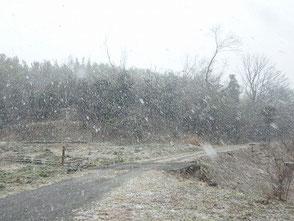 雪降る里山の風景